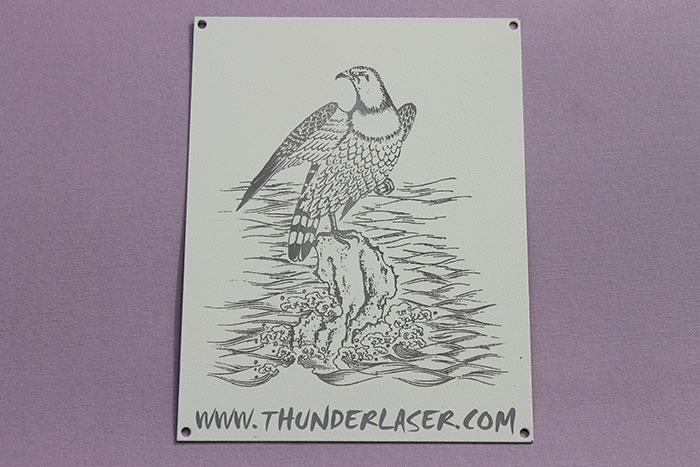 eagle Coated-Metal laser engraver